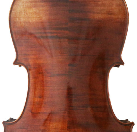 Model SRC1004 Professional Level Solid Spruce & Maple Bright Painting with Wood Grains Cello Different Sizes with Accessories