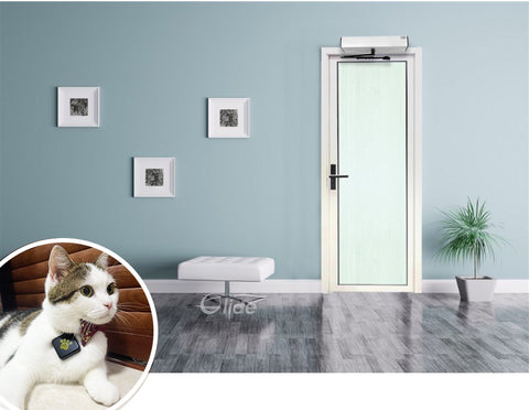 contactless automatic swing door with smart pet tags