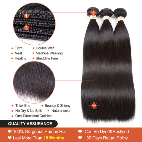 pegasus Brazilian Hair Body Wave 3 Bundles With Closure Human Hair Bundles With Closure Lace Closure Remy Human Hair Extension