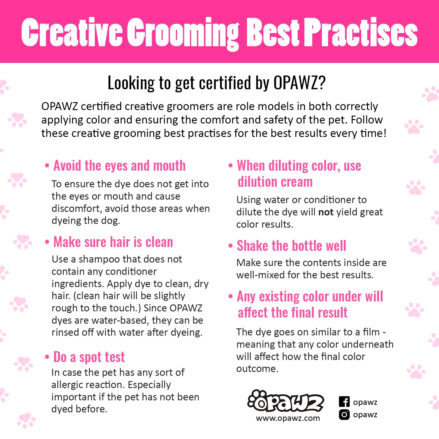 pet safety creative grooming practises