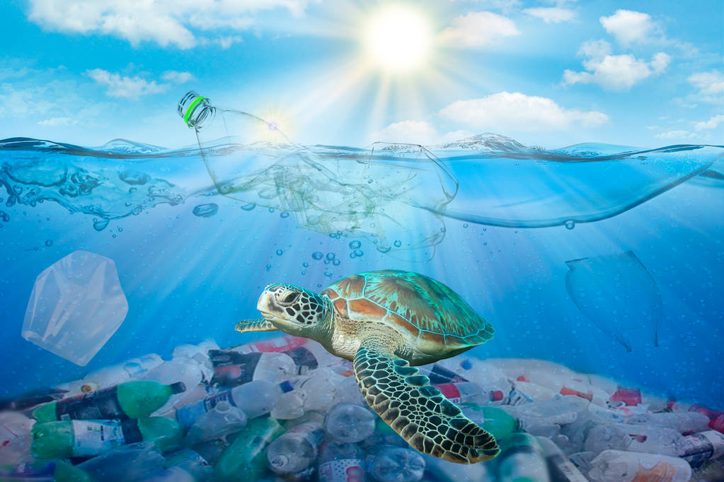 FIGHT SINGLE-USE PLASTICS THILY