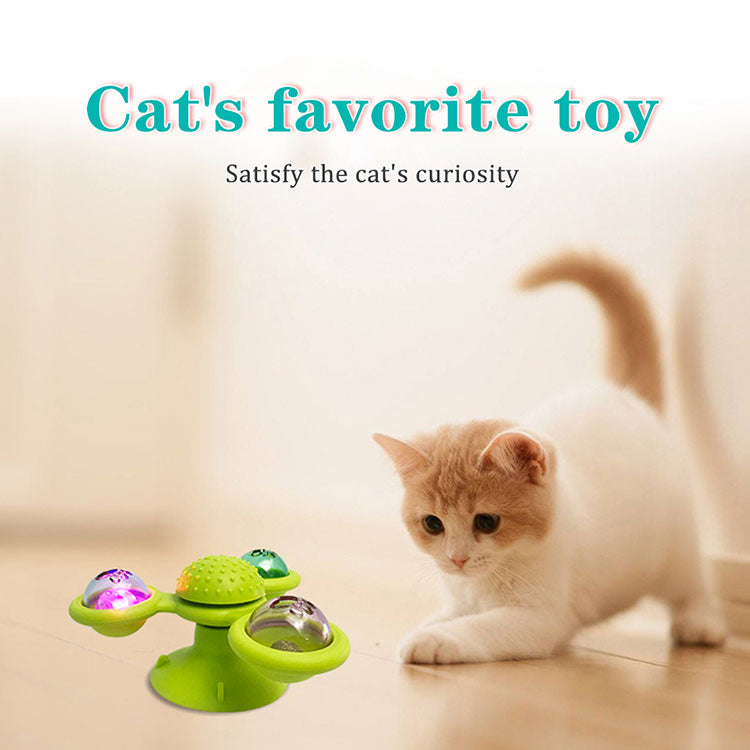 cat toys and accessories