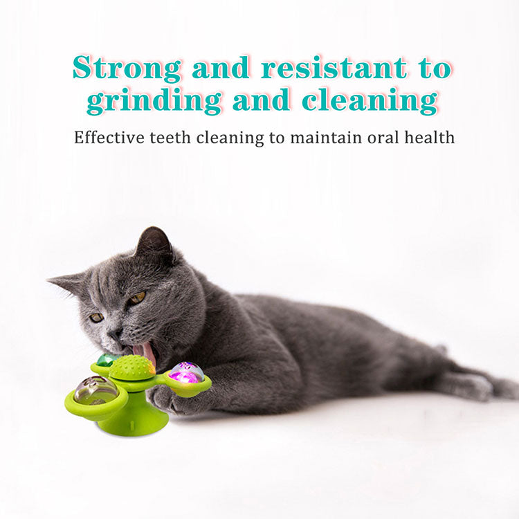 cat toys suction cups