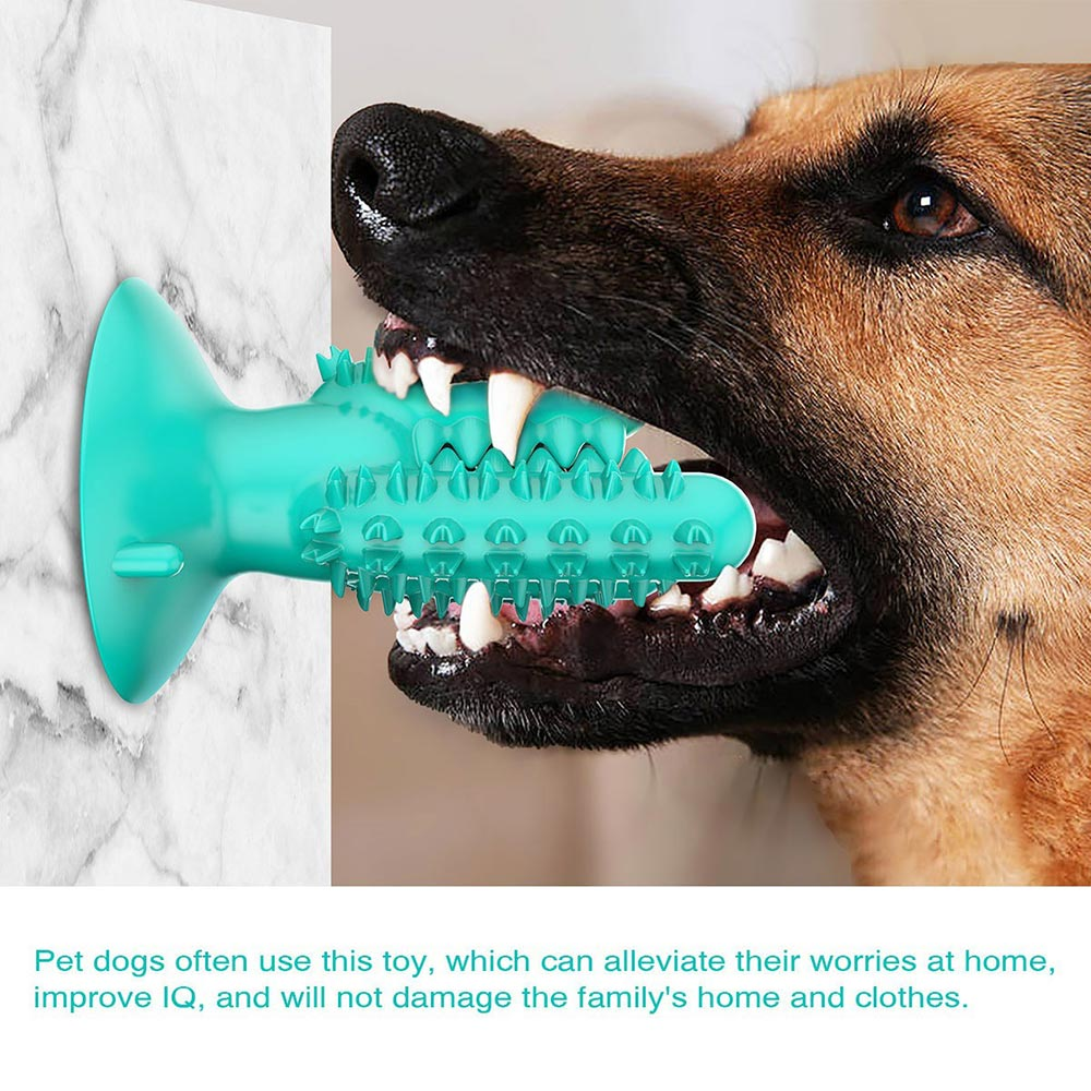 PETDURO Dog Chew Toys Indestructible Tough Dental Teething Toys with Rubble Suction Cup
