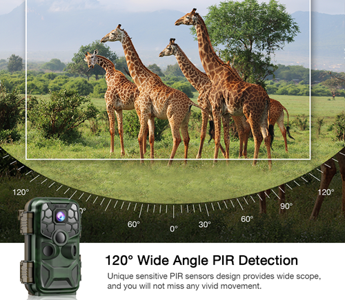 trail camera for hunting