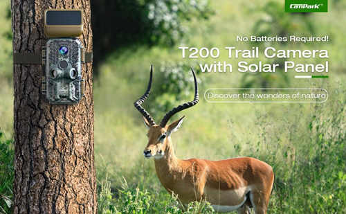 trail camera outdoor
