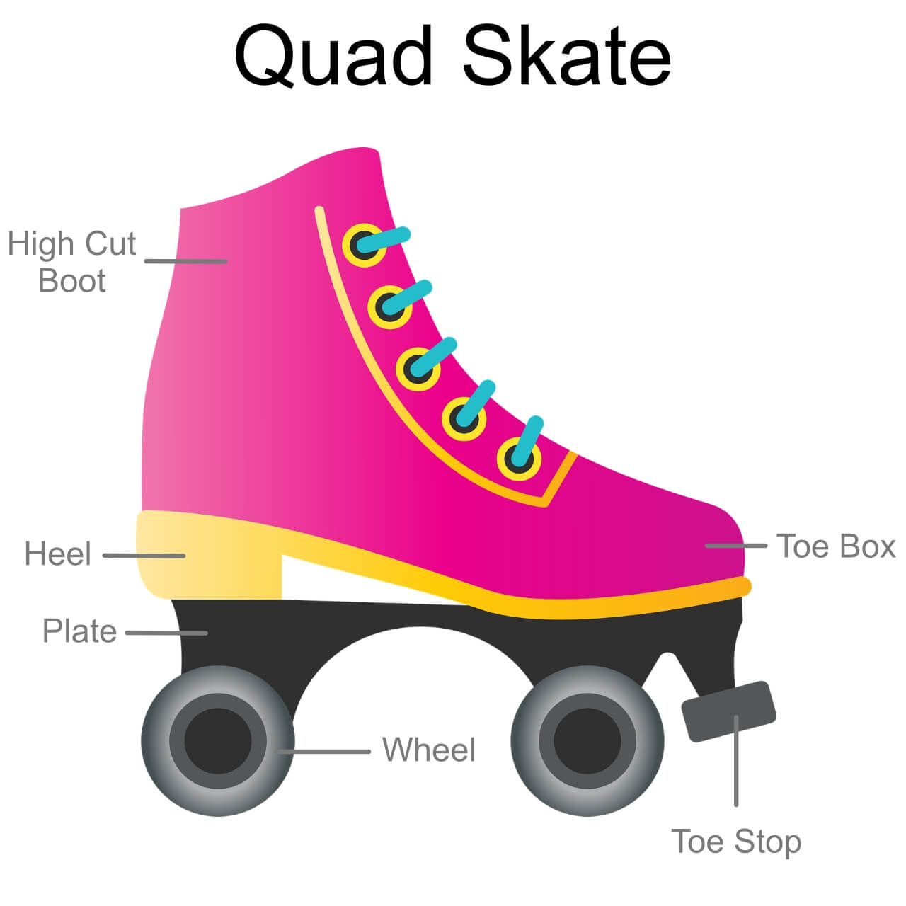 Diagram of a Quad Skate. Things You Need to Know Before Stepping in on the Roller-Skating Trend | Hummingbird Blog