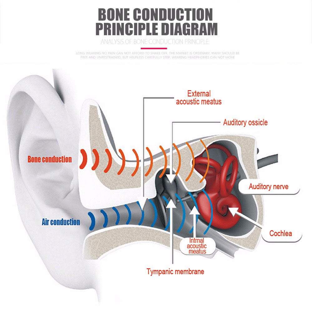 bone conduction instruction