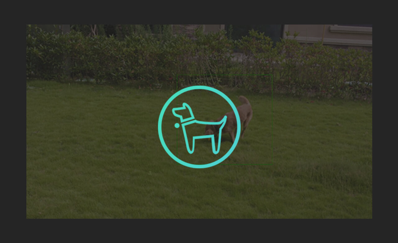 SimCam Alloy 1S Keep pets out of your yard