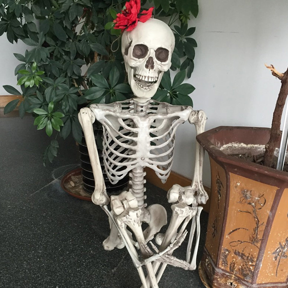 Halloween Human Skeleton Prop Poseable Full Size Model