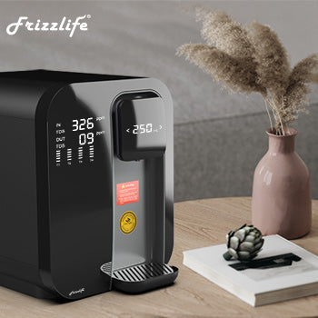 Frizzlife WA99 countertop reverse osmosis system