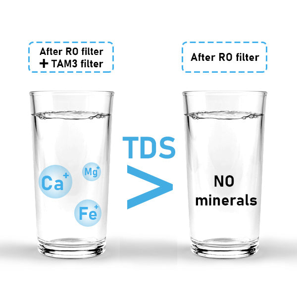 Alkaline and remineralization water filter
