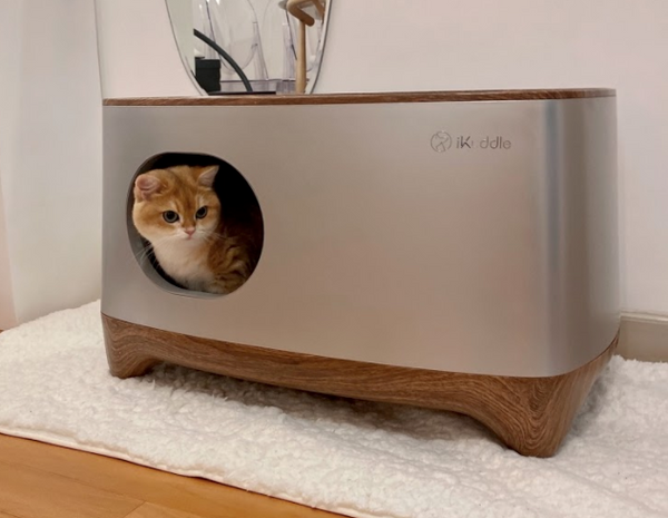 iKuddle, the Smarter Litter Box