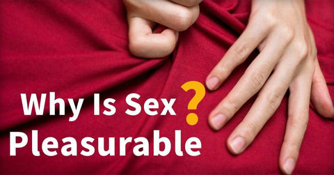 Why Is Sex Pleasurable?
