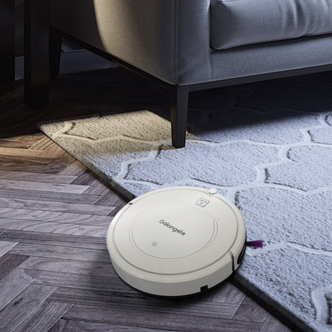 Golongele HB-1002 for Carpet Cleaning