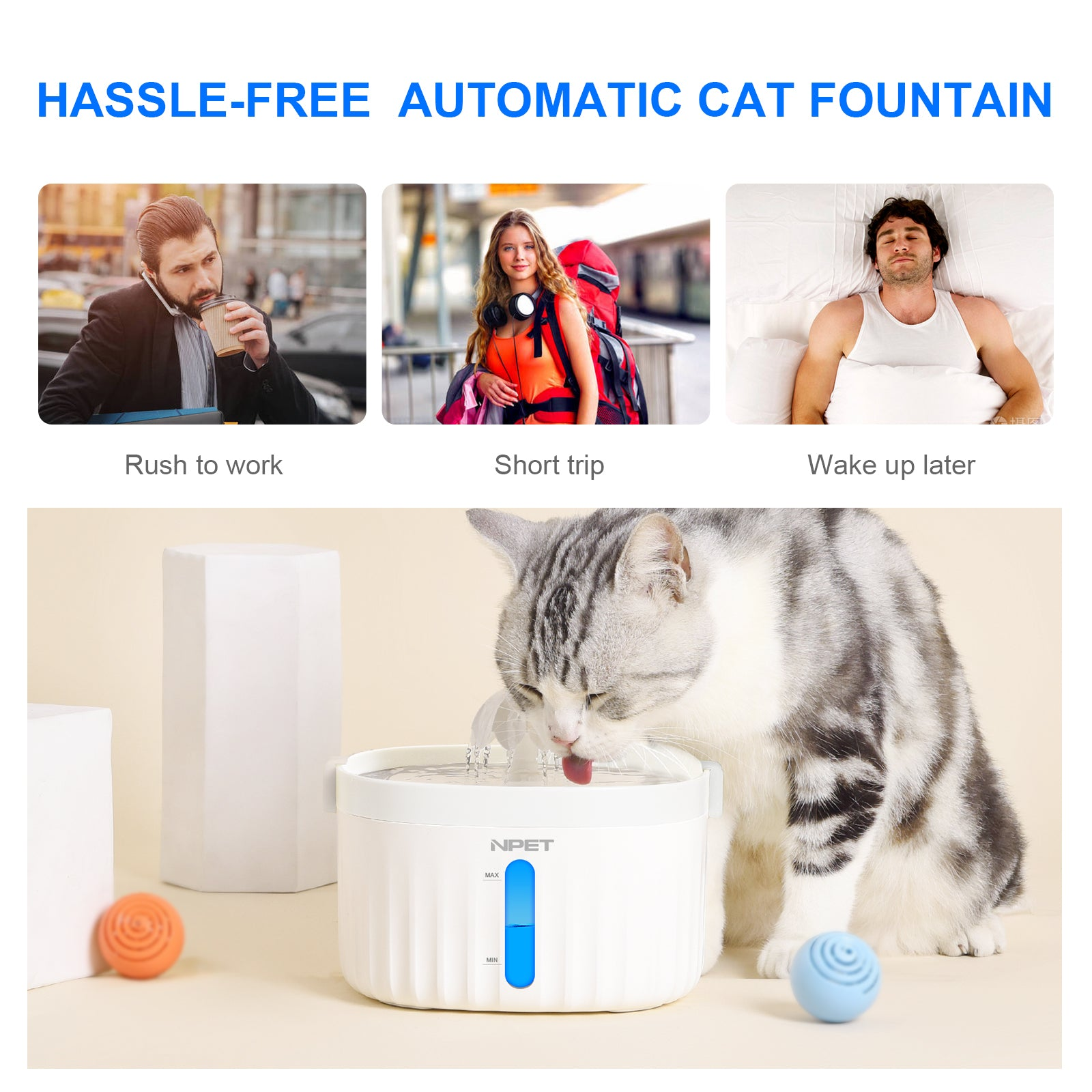 cat water fountain application