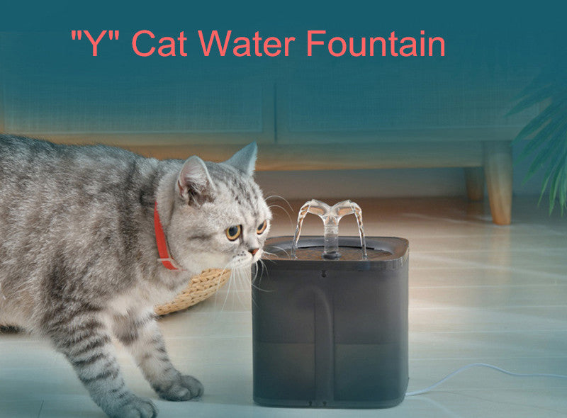 cat water fountain transparent