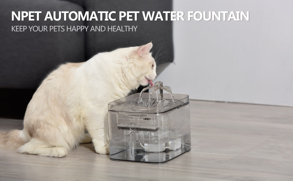 npet pet water fountain