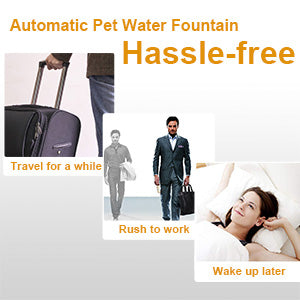 NPET WF010 Automatic Pet Water Fountain