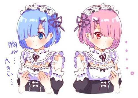 Anime Twin Girls-Rem & Ram