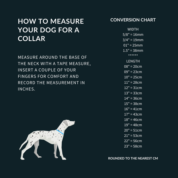 dog meck measure chart