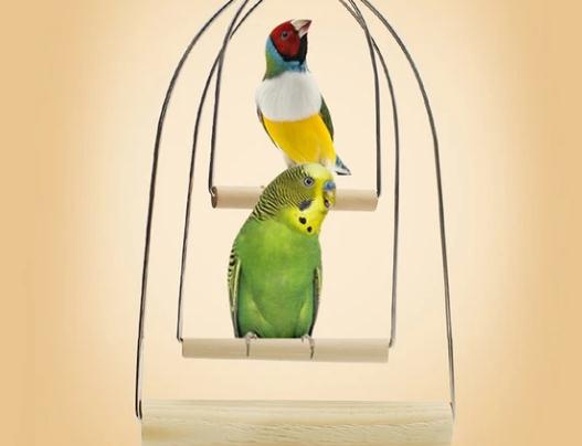 Parrot Stand Toy