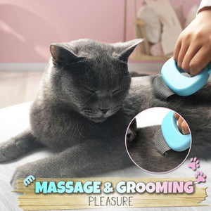 (Buy 1 Get 1 Free) Pet Massaging Hair Removal  Shell Comb