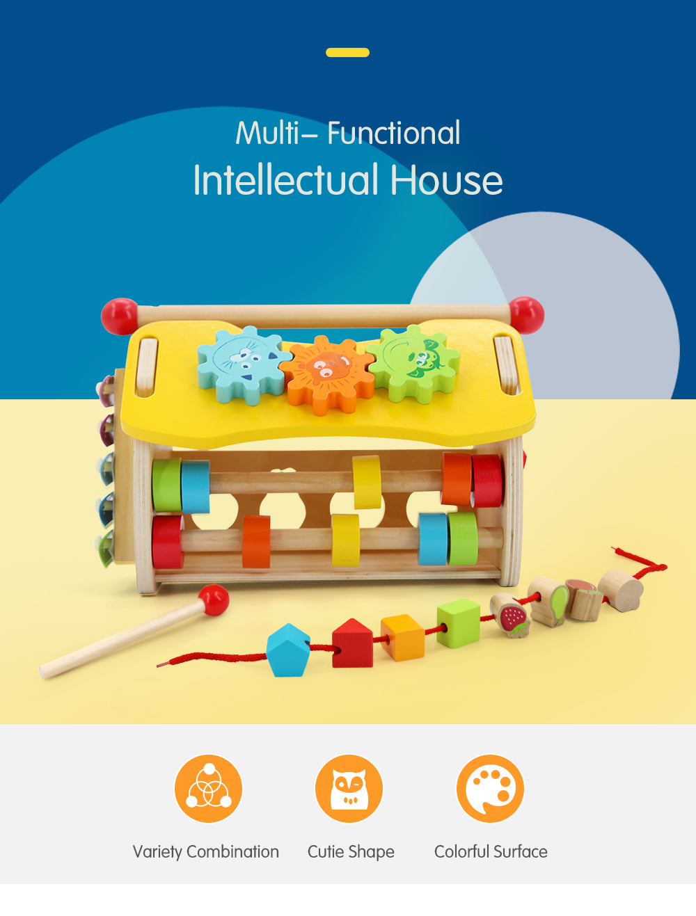 Multi-Functional Intellectual House