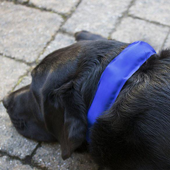 TheseCool-dog cool collar-09