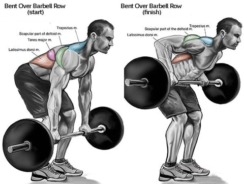 barbell rows bent over
