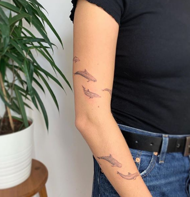 dolphin tattoos on the arm