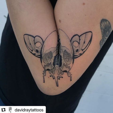 unique scarab tattoo on the arm