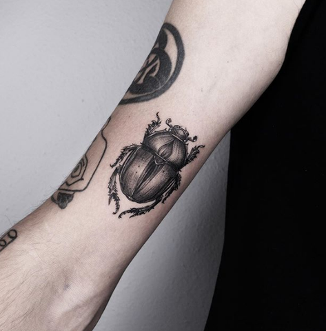 scarab tattoo on the forearm