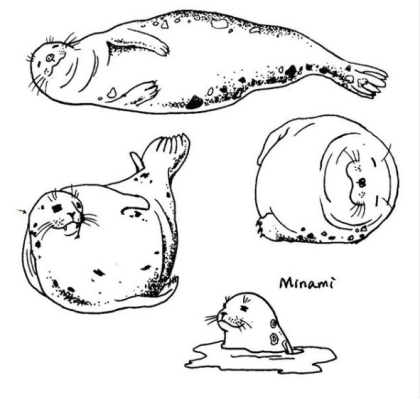 seal tattoo design