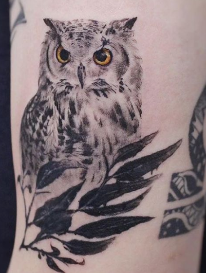 owl with plant tattoo