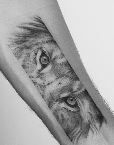 frame lion eye forearm tattoo