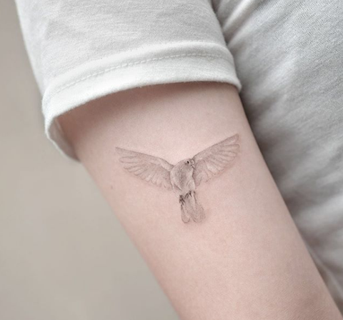 flying dove arm tattoo