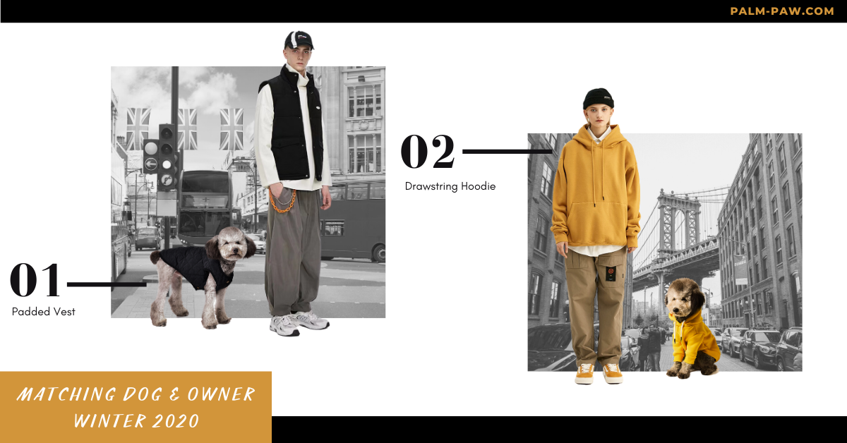 best matching dog and owner outfits