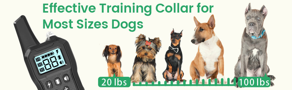dog training collar for large dogs