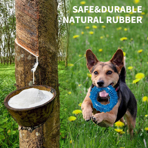 Natural rubber dog chew ring toy
