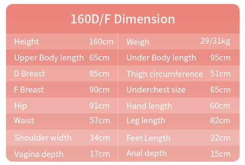 The Size Chart Of The BBdoll Silicone Sexy doll