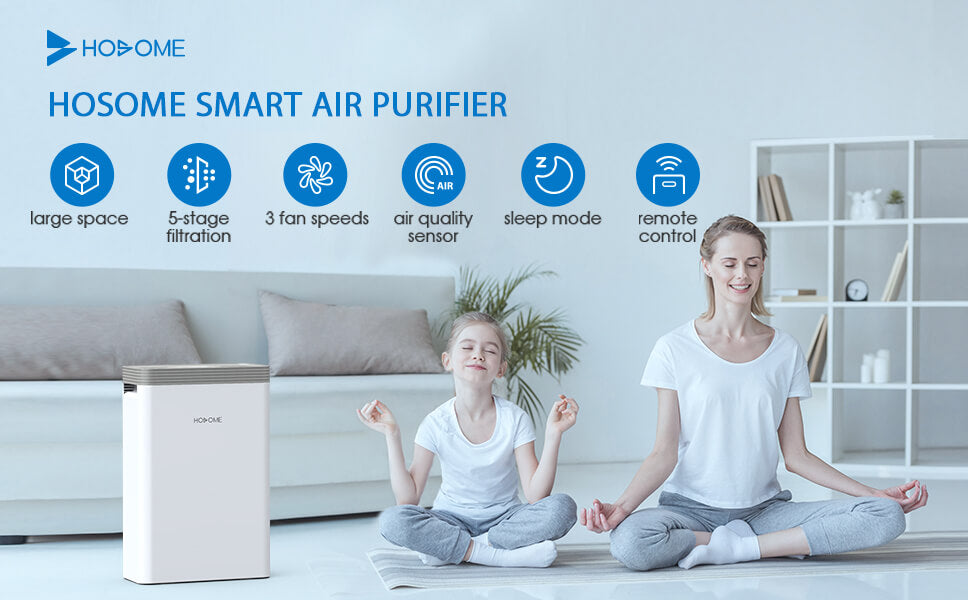 hosome air purifier overview