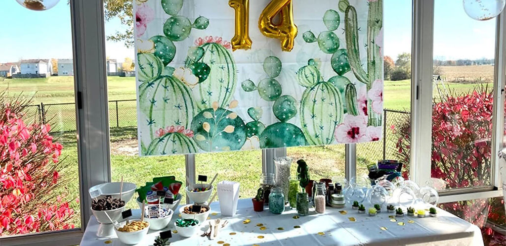 https://www.lofarisbackdrop.com/collections/cheap-party-backdrops