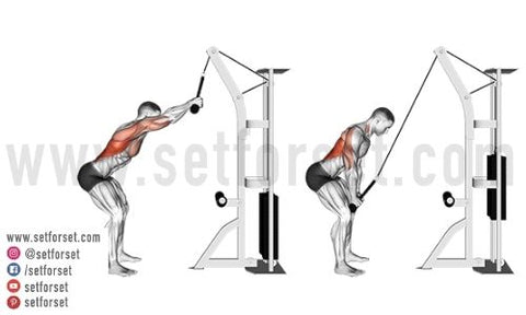 back exercises with cable machine