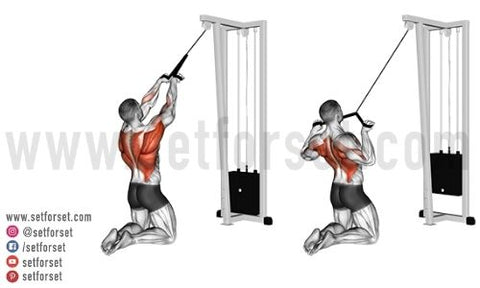 best back cable exercises