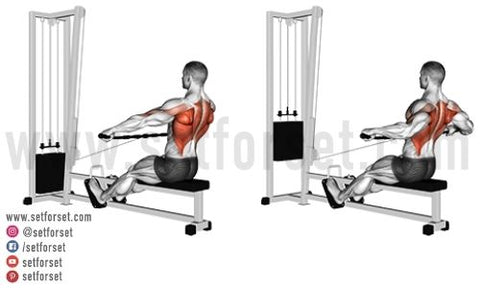 best cable exercises for back
