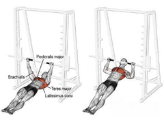 exercises for the teres major