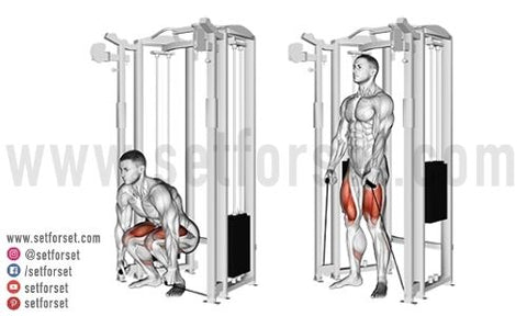 low back cable exercise