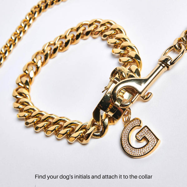 gold cuban link collar for dogs and a letter jewelry pendant tag for dogs