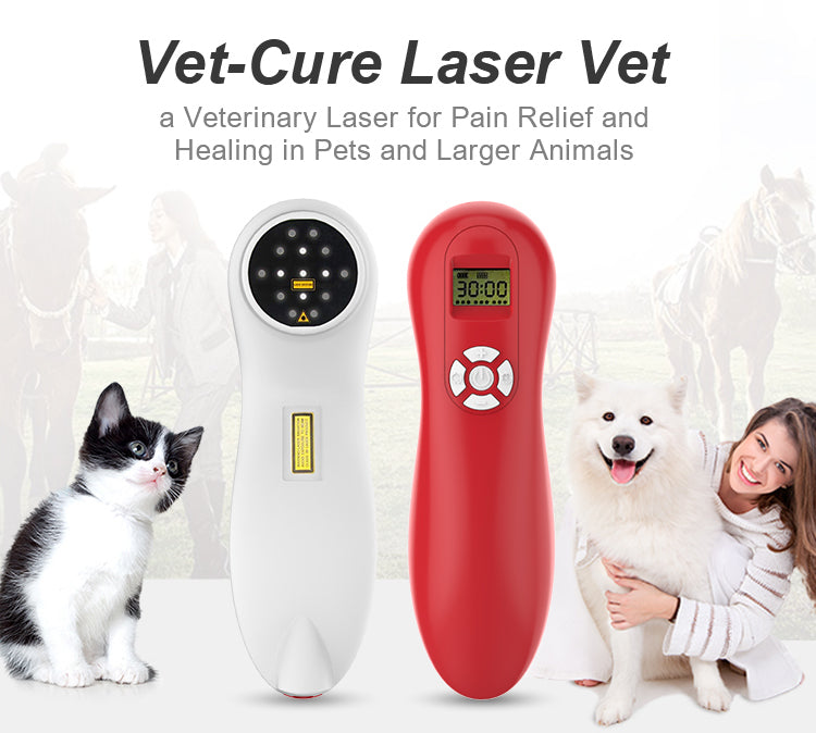 Laser therapy for pet